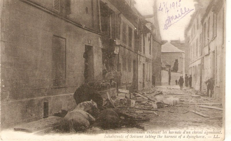 Inhabitans of Soissons taking harness of dying horse Old vintage French postca