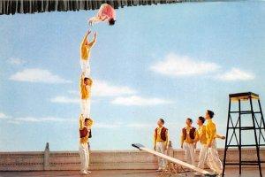 Springboard Acrobatics China, People's Republic of China Unused