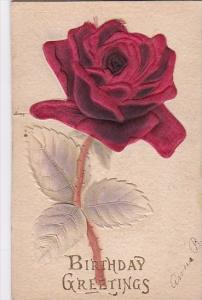 Birthday Greetings Beautiful Velvet Red Rose