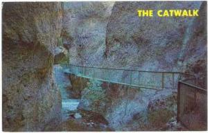 The Catwalk in Whitewater Creek Canyon, Glenwood, New Mexico, NM, Chrome