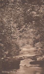 Wetton Mill Bridge Staffordshire Tucks Oilette Staffs Antique Postcard