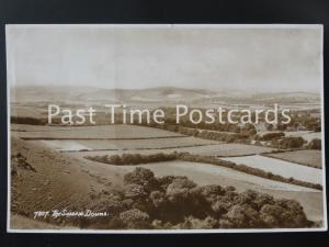 c1954 RPPC - The Sussex Downs