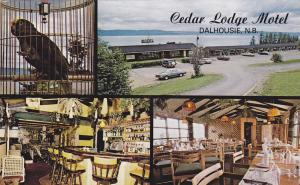 DALHOUSIE, New Brunswick, Canada, PU-1986; 4 views, Cedar Lodge Motel