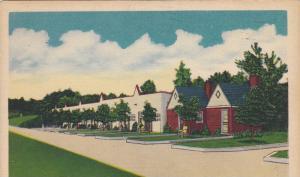 Grogan's Tourist Court & Restaurant, U.S. 220, Madison, North Carolina,  PU-1949