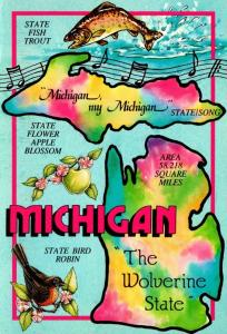 Michigan The Wolverine State With State Fish Trout State Flower Apple Blossom...
