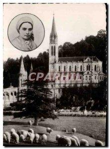 Old Postcard Lourdes H P medallion in the Basilica Saint Bernadette Sheep