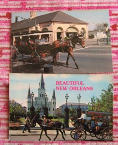 Mule Carriages Two Postcards, New Orleans, Louisiana, Sightseeing, City Views