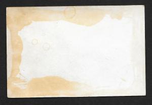 VICTORIAN TRADE CARDS (3) Stock Cards Girl in Garden Views