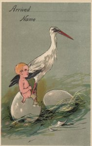 AS: BIRTHDAY , 00-10s ;Stork & Baby , PFB 8772 : #4