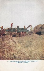 WINNEPEG, Manitoba, Canada, 1900-10s; Harvesting in the Great Wheat Fields