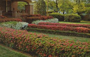 Mississippi McComb Beautiful Home With Azaleas