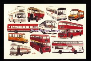 tm6633 - Ribble Buses over the last 70 years - Artist - G.S.Cooper - postcard