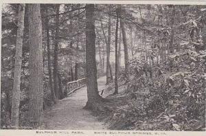 West Virginia White Sulphur Springs Sulphur Springs Park Albertype