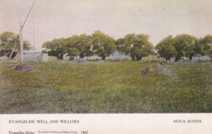Evangeline Well and Willows - Nova Scotia, Canada - DB