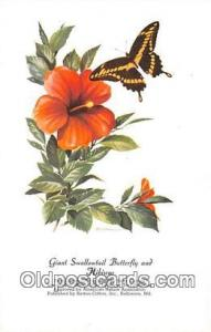 Giant Swallowtail Butterfly & Hibiscus Artist RT Peterson Postcard Post Card ...