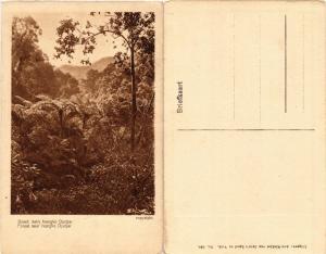 CPA INDONESIA Bosch nabij Nongko Djadjar (392307)