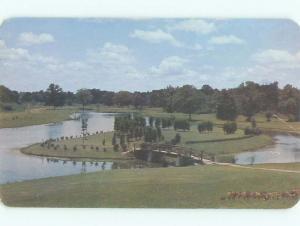 Pre-1980 PARK SCENE Charlotte North Carolina NC AF7276