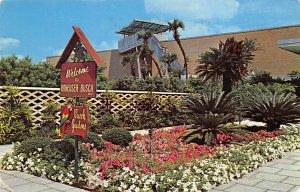 Beer Brewery / Distillery Post Card Busch Gardens Tampa, Florida, USA 1964