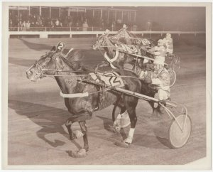 WINDSOR RACEWAY Harness Horse Race , ARMBRO SONNET winner
