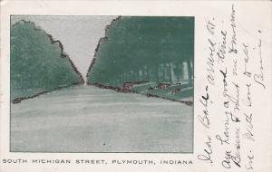 South Michigan Street, Glitter detail, Plymouth, Indiana, PU-1910