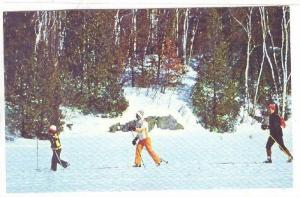 A Family Outing On Cross-Country Skis, St-Jovite-Mont-Tremblant, Quebec, Cana...