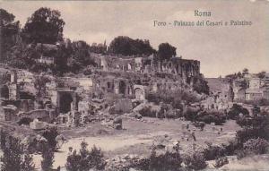Roma, Foro, Palazzio dei Cesari e Palatino, Lazio, Italy, 00-10s