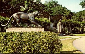 South Carolina Murrels Inlet Brookgreen Gardens The Panther