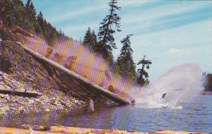 Washington Dumping Logs