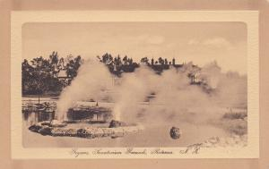 NEW ZEALAND, 1900-1910´s; Geysers, Sanatorium Grounds, Retorua