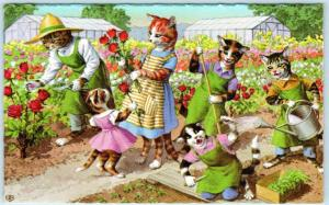 MAINZER CATS Anthropomorphic  CATS GARDENING Red Roses  #4927  Postcard
