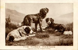 Dogs - The Three Friends