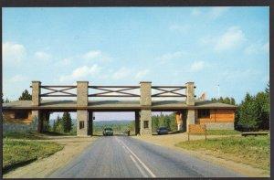 Ontario East Gate Entrance to Algonquin Provincial Park - Chrome
