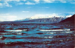 Yukon Canada~Kluane Lake View~Famous for Lunker Trout~Mountains Bknd~c1950s Pc