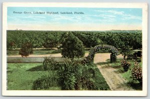 Lakeland Florida~Lakeland Highland Orange Grove~Flower Arbor Drive~Car~1920s
