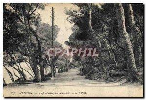 Old Postcard Menton Cap Ferrat a Undergrowth