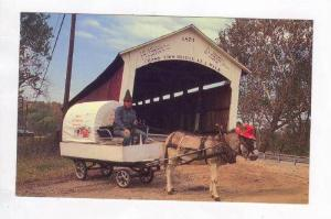 Bill Caps & His Mule Recall Pioneer Days When The Bridge 14-61-13 Was Young, ...