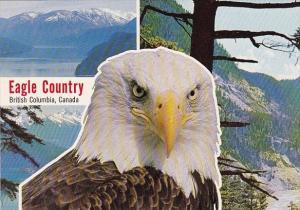 Canada British Columbia Eagle CountryRichmond British Columbia