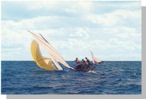 Beautiful Cape Cod Postcard, Sail Boat Racing, Mass/MA