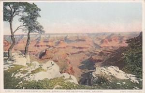 Arizona Grand Canyon From El Tovar Fred Harvey Detroit Publishing