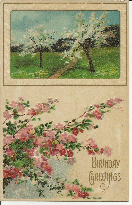 Birthday Greetings, Embossed