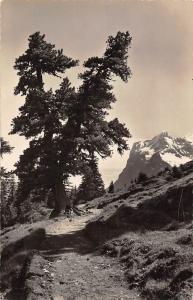 Switzerland Grindelwald - Wetterhorn AK