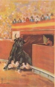 Bull Fight  , 10-30s ; SALIDA DEL TORIL
