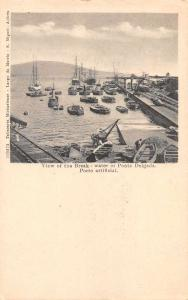 Ponta Delgada Portugal View of the Break Scenic View Antique Postcard J59533