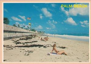 Florida Palm Beach At Palm Beach In Tropical Florida