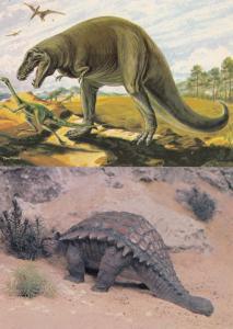 Tyrannosaurus Rex Ankylosaurus 2x 1970s Dinosaur Postcard s