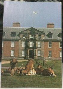 England Dunham Massey Altrincham - posted 1995
