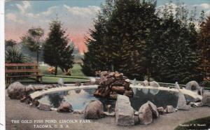 Washington Tacoma The Gold Fish Pond Lincoln Park Curteich