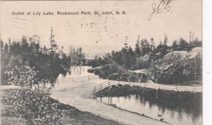 ST JOHN, New Brunswick, 1907 ; Lily Lake outlet , Rockwood Park