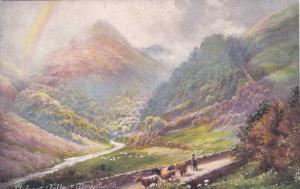 North Wales , 00-10s ; TUCK # 6233 ; Llyfnant (Valley) Aberystwyth