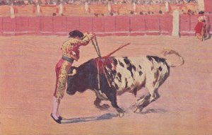 Barcelona , Spain , 00-10s ; Bull Fighting